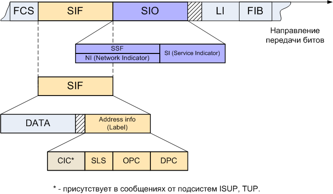 MSU Structure